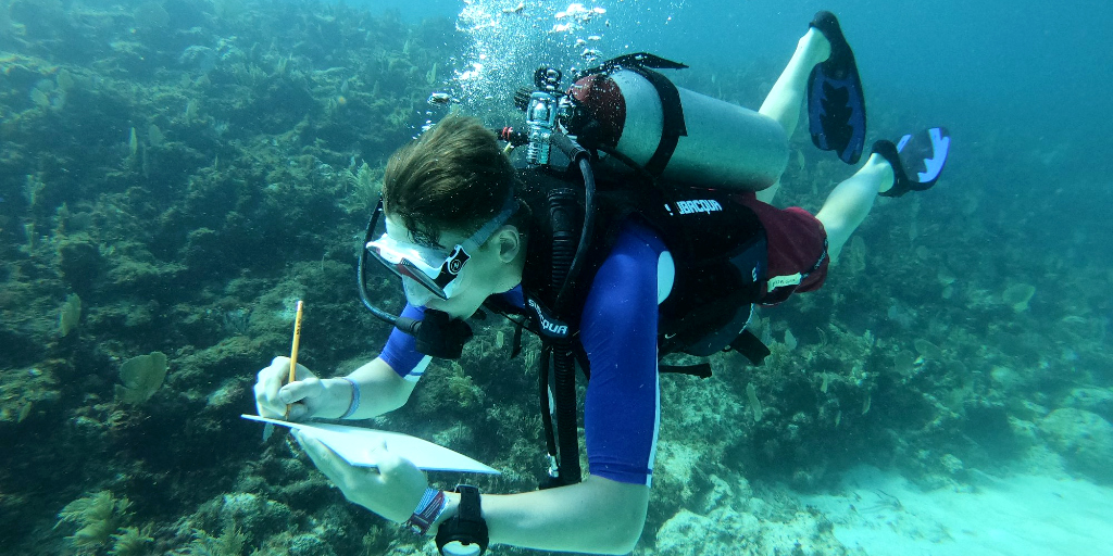 A GVI volunteer takes notes underwater while on a marine conservation internship.