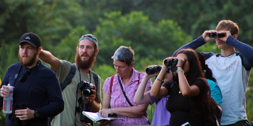 GVI volunteers spot birds during an environmental conservation project.