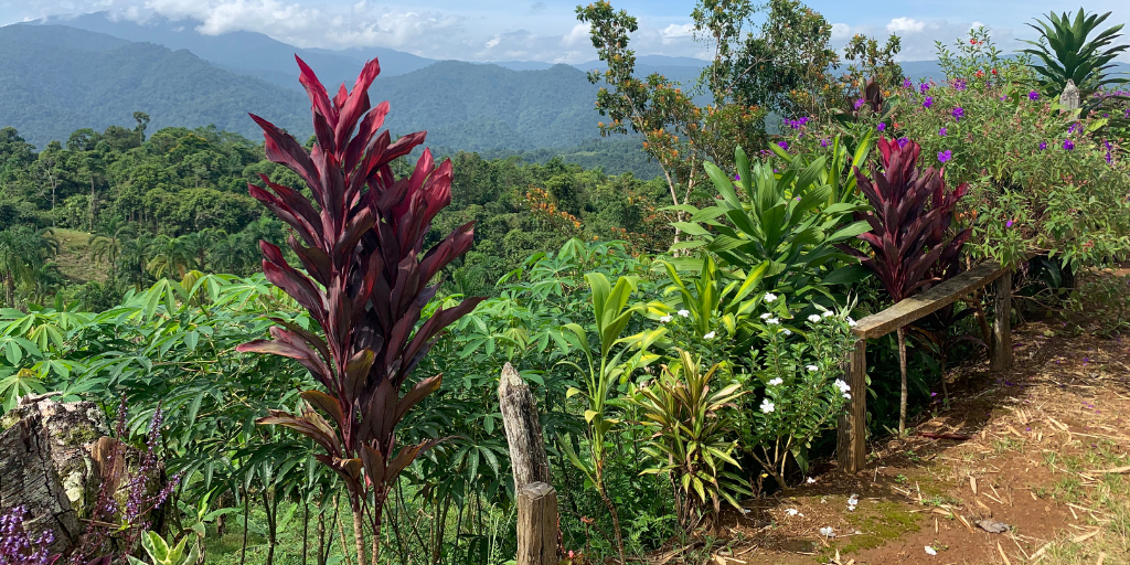 Cimarrones in Costa Rica offers visitors a gorgeous environment to volunteer in