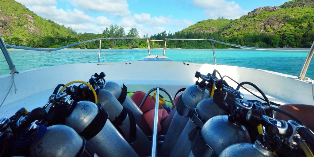 Oxygen tanks are very important for dives during a marine conservation internship.