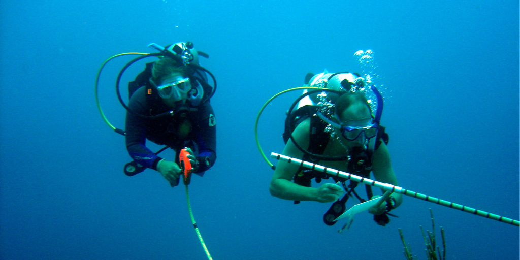 GVI volunteers using the skills they learnt during their PADI scuba diving course.